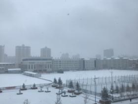 呼伦贝尔迎降雪 银装素裹一派北国风光