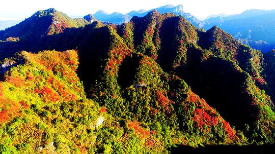 重庆酉阳板溪红叶染红山林