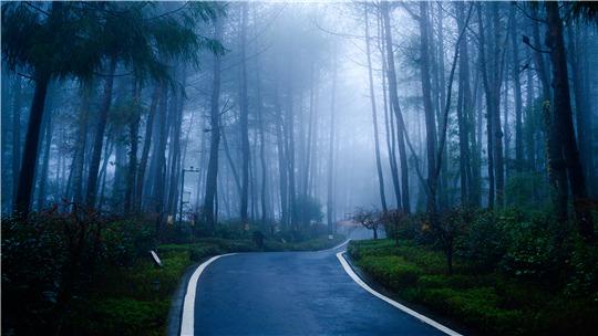 四川巴中南阳公园云雾缭绕于山间