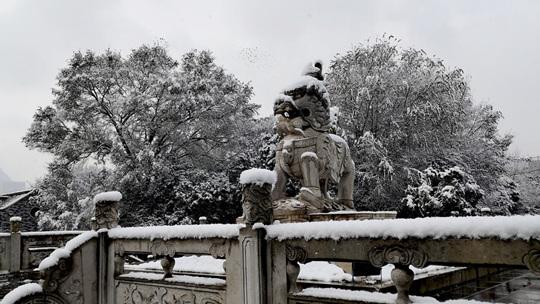 下雪啦! 贵州六盘水雪景美翻天
