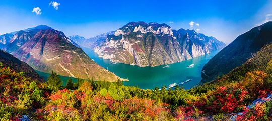 免滤镜!重庆巫山红叶美如诗画