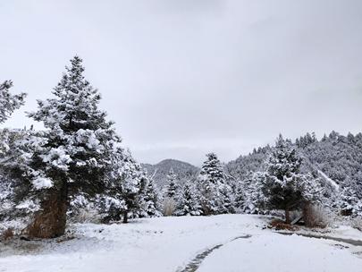 云南麗江及香格里拉等地迎來2020年第一場雪