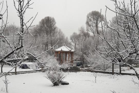青海遭遇大范围降雪 不利出行有利春耕春播