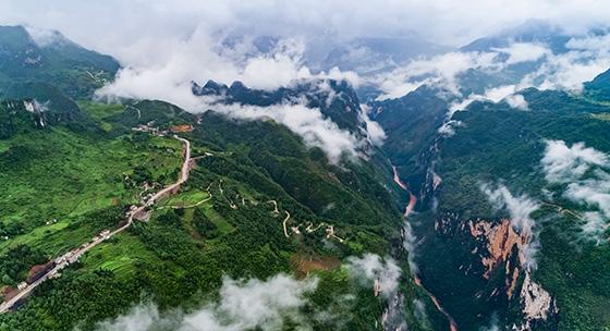 贵州六盘水:黑叶猴自然保护区云雾缭绕如仙境