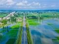 湖北洪湖市沙套湖水位高涨农田被淹 多处堤坝紧急加固