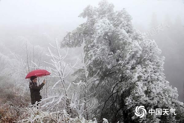 重庆多地迎雾凇美景 今日东部高海拔地区还有降雪