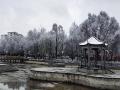 青海南部出現降雪 到處銀裝素裹仿若童話世界