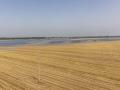 长江水位上涨 湖北黄冈罗霍洲被淹