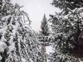 青海东部农业区降下今年下半年首场雪 一片银装素裹