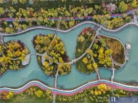 新疆石河子景色如画 美似江南