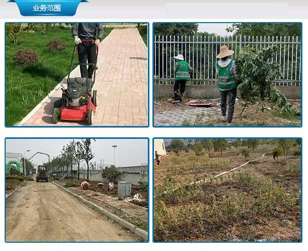 长丰绿化园林工程联系方式