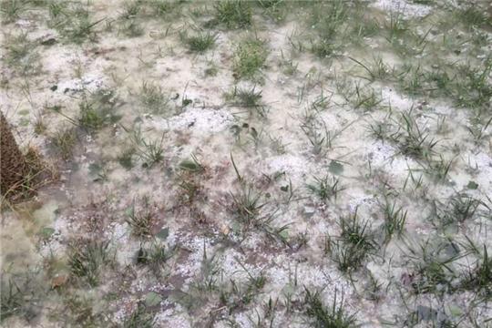 新疆阿合奇縣遭遇冰雹