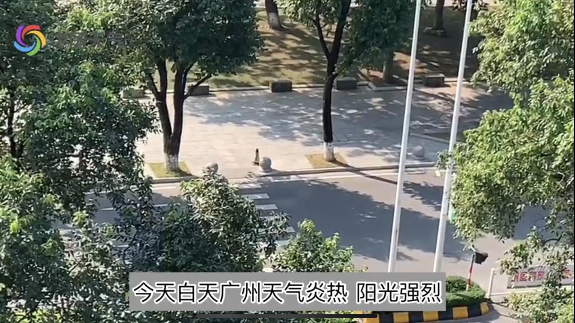 广州:广州今现高温天气  闷热感明显