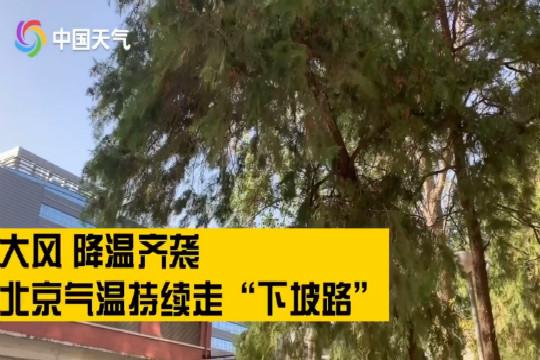大风降温齐袭  北京气温持续走低 最高温仅4℃