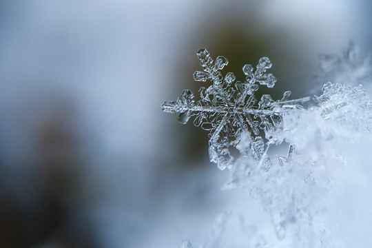 节气365#小雪#:小雪节气到啦!