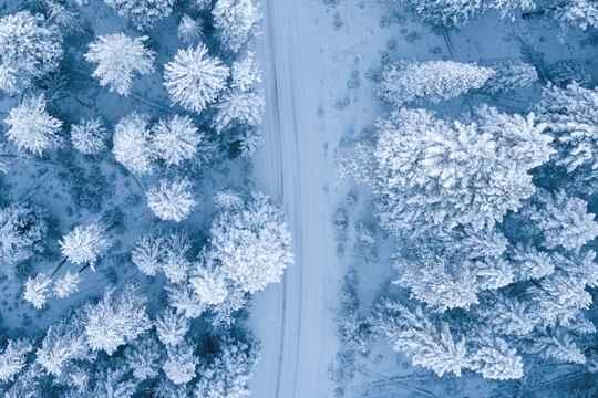 节气365#小雪#:小雪南北大不同