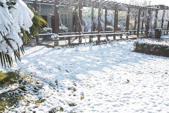 25日西安降今冬首场降雪 白鹿原一片银装素裹
