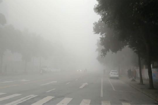 四川眉州迎今年最强大雾