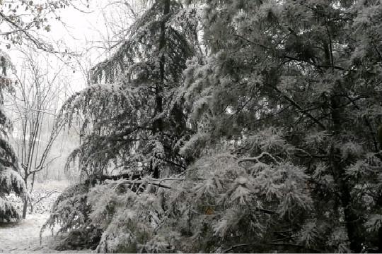 京城迎今冬第二场降雪 市民出行受影响