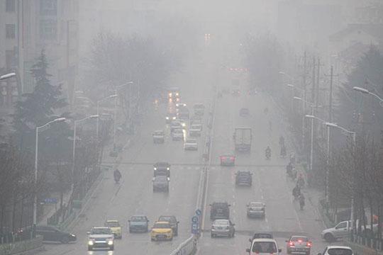 冬至现雨雾 山东威海交通出行受影响