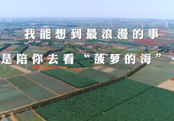 """�w越湛江 ��你去看""""菠�}的海"""""""