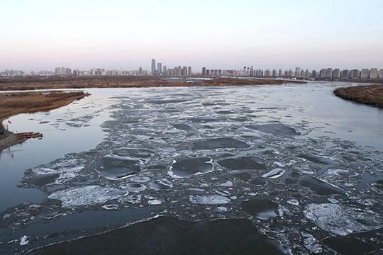 """天气回暖 哈尔滨松花江""""跑冰排""""场面壮观"""