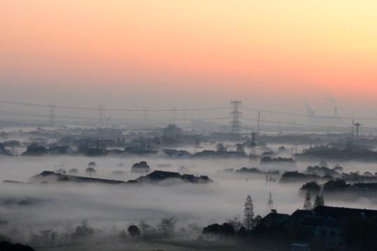 """有一种雾 叫""""斗山矮脚雾"""""""