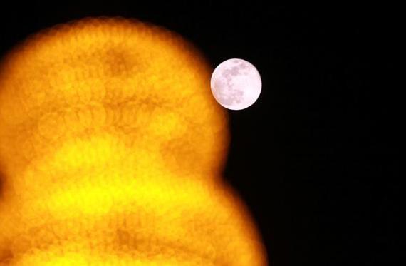 看超级月亮咱是专业的!