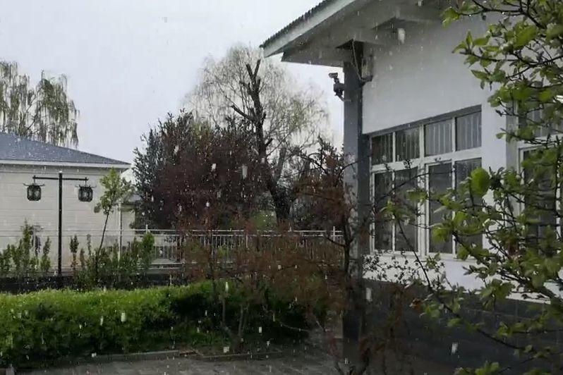 山东北部降春雪 警惕低温霜冻影响