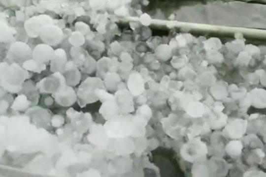 """河北曹妃甸遭遇冰雹""""枪林弹雨"""""""