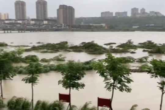 四川绵阳遭遇暴雨 洪峰过境一片狼藉