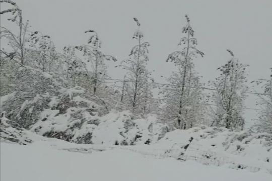 强冷空气突袭 新疆阿合奇遇暴雪