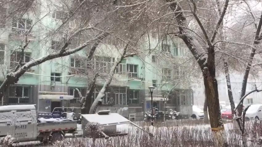 新疆沿天山一带普降小到中雪局地大雪