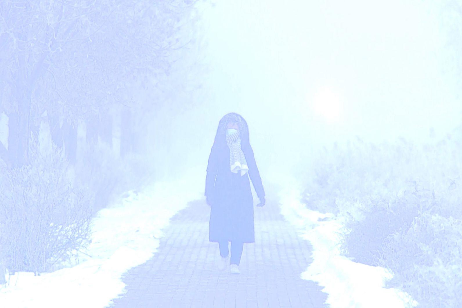 新疆奎屯现强浓雾 局地能见度不足10米