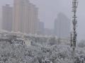 乌鲁木齐迎今年下半年首场雪