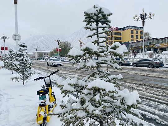 夏河县气象局发布暴雪黄色预警信号 雪深突破历史记录