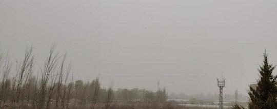 临泽:普降小雨雪天气