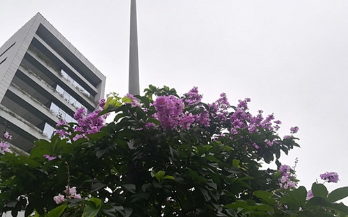 12日-14日广东仍有大范围强降水
