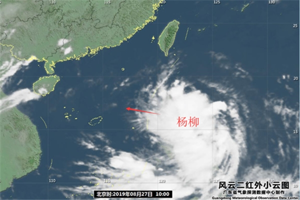 """12号台风""""杨柳""""生成"""