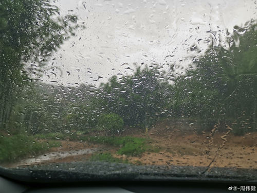 10-11日广东大部有雷雨天气