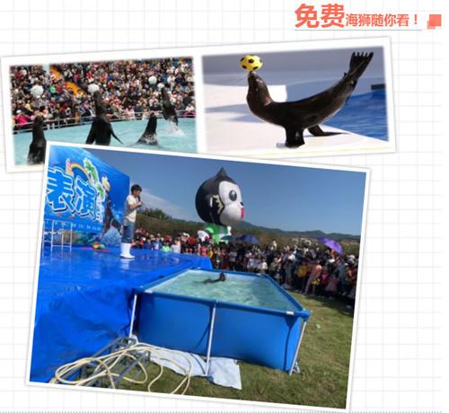 """中国避寒宜居地   暖暖的周末 与甜甜的""""她""""相约吧"""