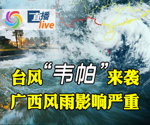 """台风""""韦帕""""来袭 广西风雨影响严重"""