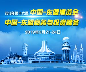 """2019年中国-东盟""""两会""""服务专题"""