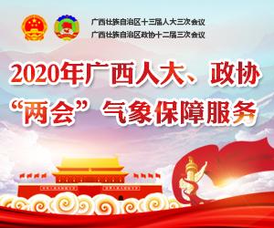 """2020年广西人大、政协""""两会""""气象保障服务专题"""