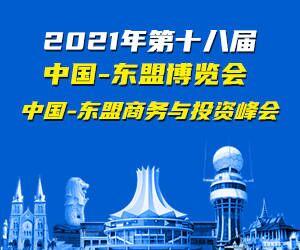 """2021年中国-东盟""""两会""""服务专题"""
