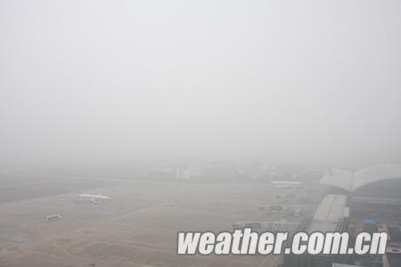 降落为600米,此次大雾天气能见度标准已低于飞机降落标准,但仍高于