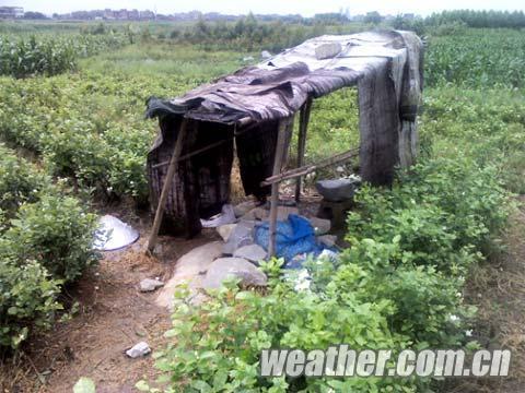 雷击造成3人身亡的小茅房