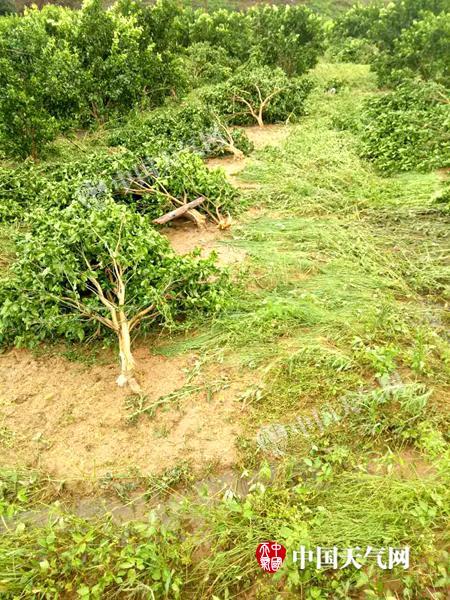 特大暴雨袭击永福 受灾人数超过6万