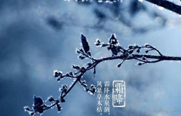 广西霜降见霜大伙儿 得再等个把月