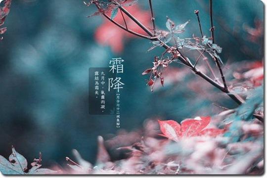 霜降节气冷空气活动频繁 广西多阴雨天